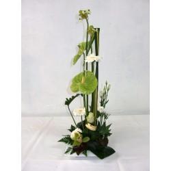 Composition hauteur Blanc vert